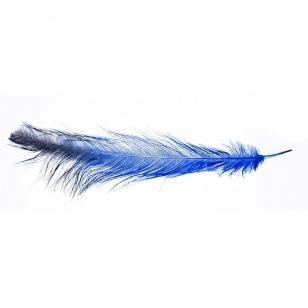 Rhea Feathers