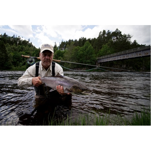 Video Atlantic Salmon On Fly