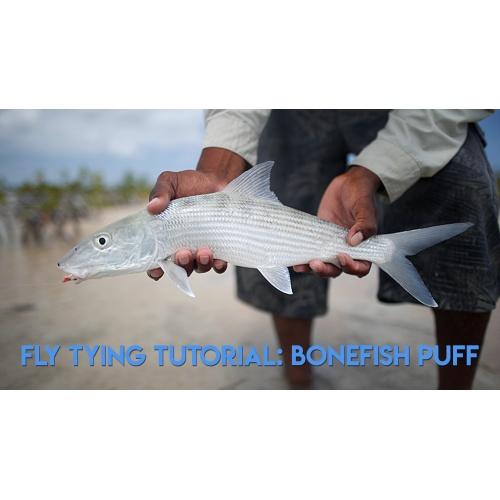 Vliegbinden: Bonefish Puff Video