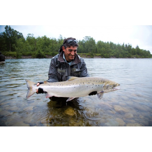 REISA RIVER  GIANT SALMON IN NORWAY