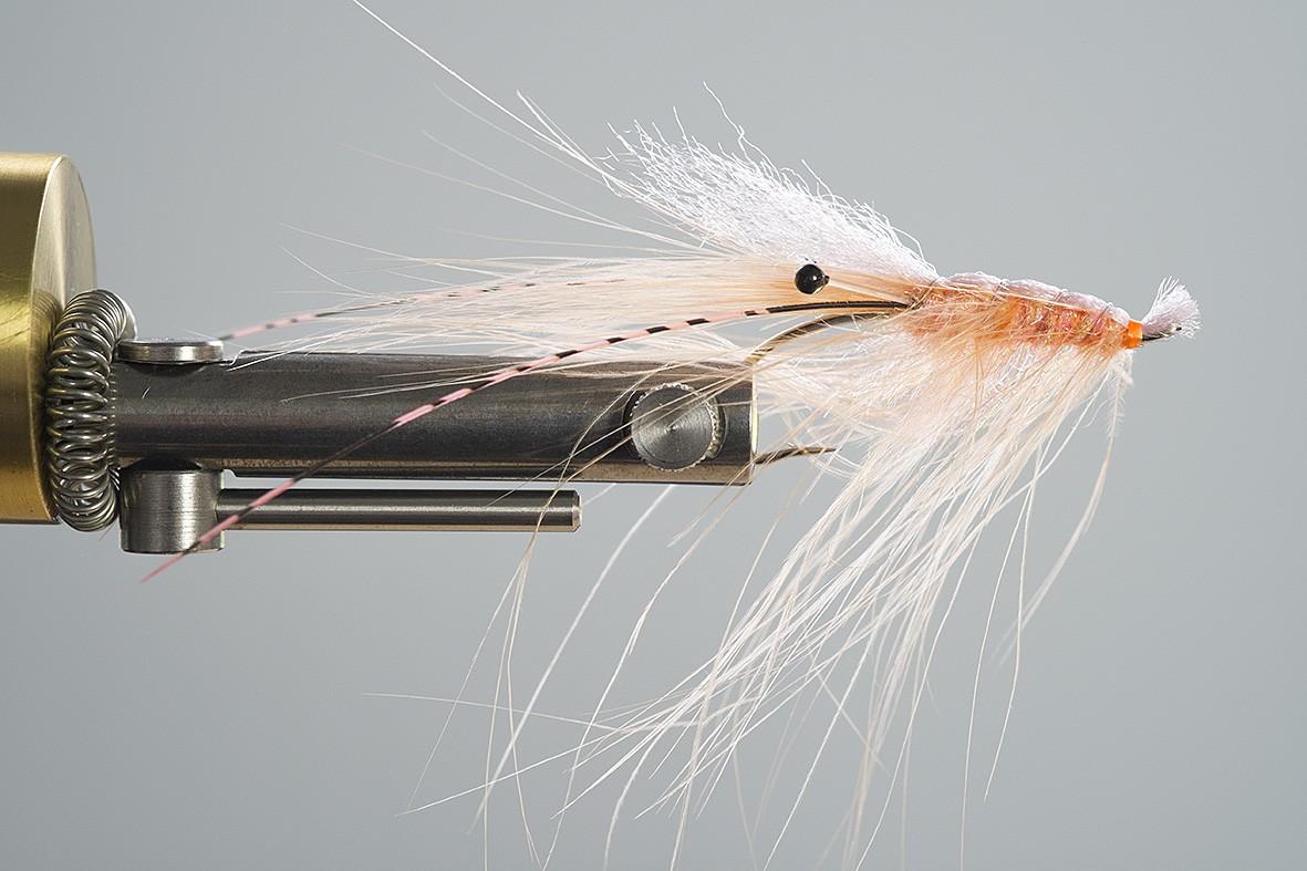 Steelhead-Shrimp